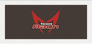 チームマッハ公式サイト