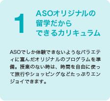 ASOオリジナルの留学だからできるカリキュラム